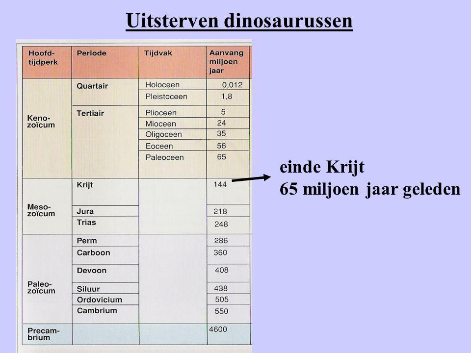 Uitsterven dinosaurussen
