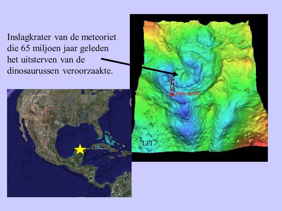 Inslagkrater van de meteoriet die 65 miljoen jaar geleden het uitsterven van de dinosaurussen veroorzaakte.