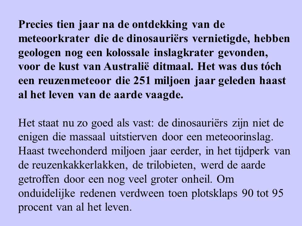 Precies tien jaar na de ontdekking van de meteoorkrater die de dinosauriërs vernietigde, hebben geologen nog een kolossale inslagkrater gevonden, voor de kust van Australië ditmaal. Het was dus tóch een reuzenmeteoor die 251 miljoen jaar geleden haast al het leven van de aarde vaagde.
