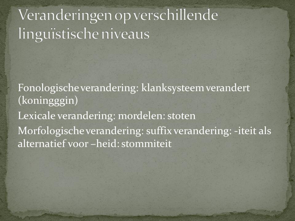 Veranderingen op verschillende linguïstische niveaus