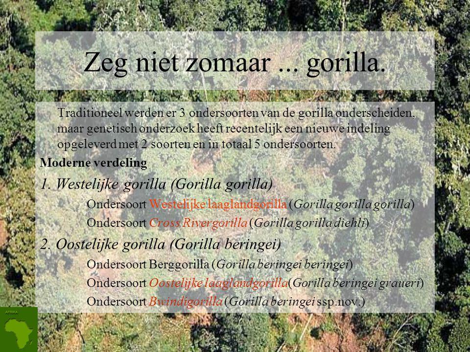 Zeg niet zomaar ... gorilla.