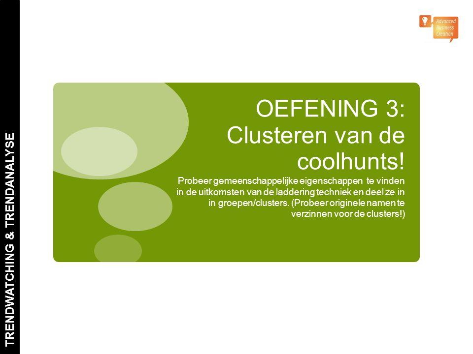 OEFENING 3: Clusteren van de coolhunts!