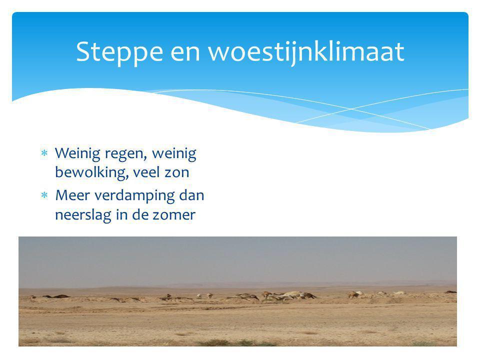 Steppe en woestijnklimaat