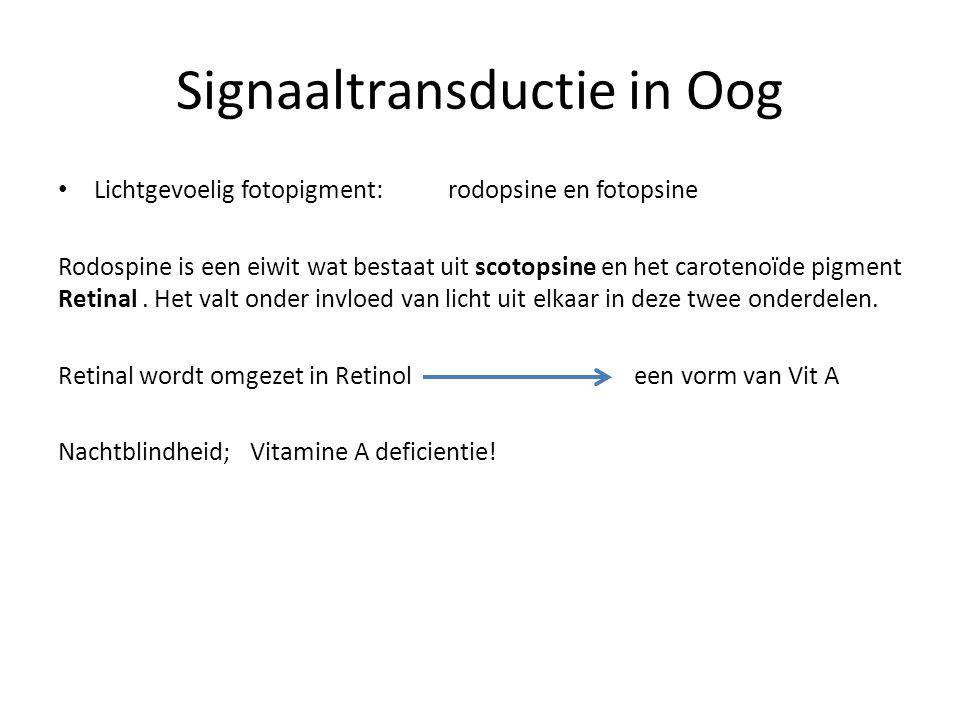 Signaaltransductie in Oog