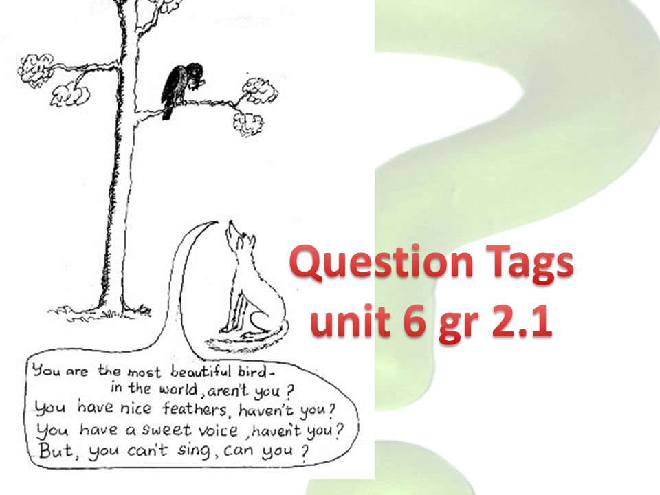Question Tags unit 6 gr 2.1