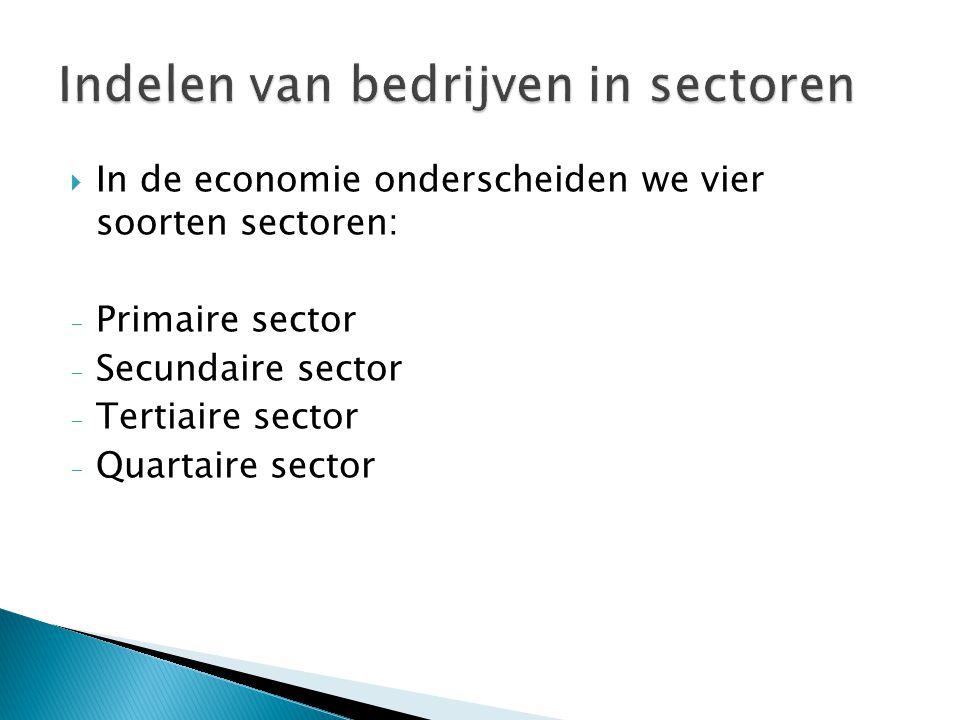 Indelen van bedrijven in sectoren