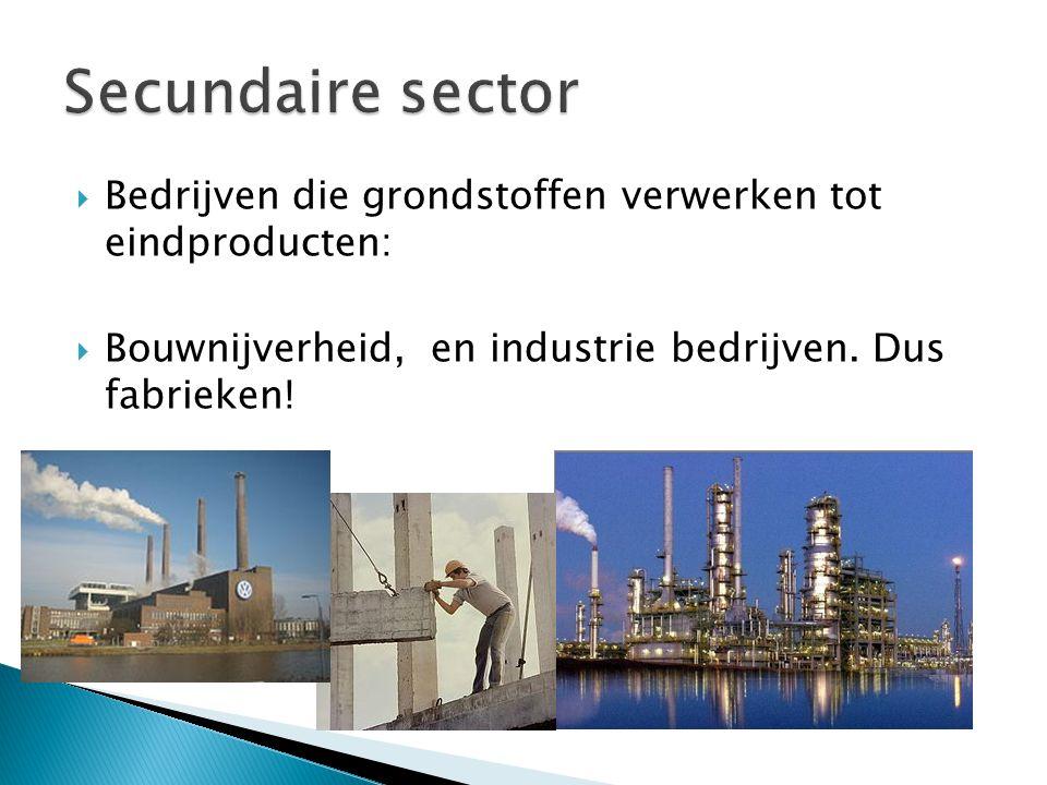 Secundaire sector Bedrijven die grondstoffen verwerken tot eindproducten: Bouwnijverheid, en industrie bedrijven.