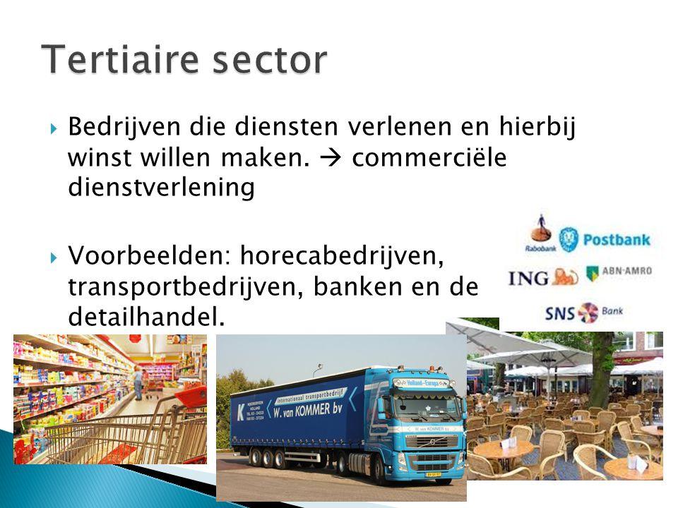 Tertiaire sector Bedrijven die diensten verlenen en hierbij winst willen maken.  commerciële dienstverlening.