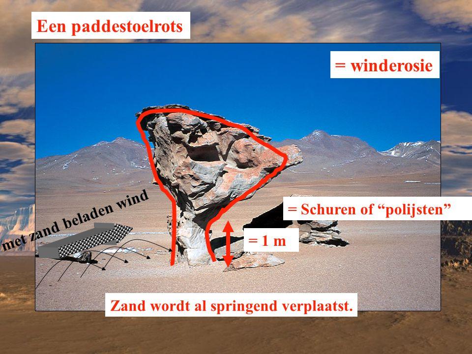 Een paddestoelrots = winderosie met zand beladen wind