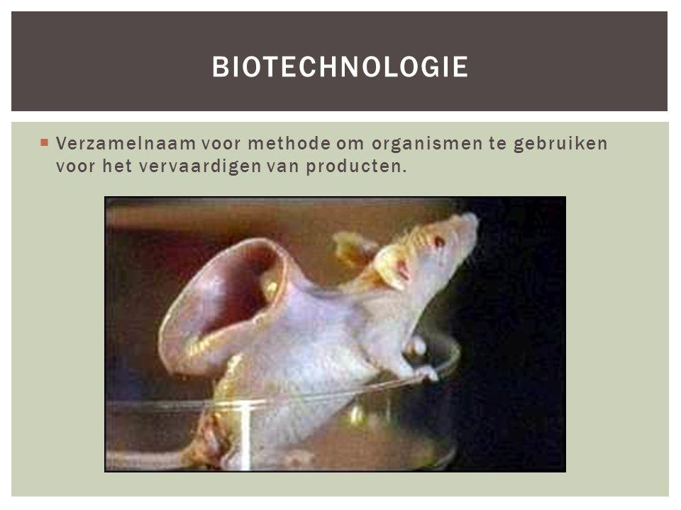 biotechnologie Verzamelnaam voor methode om organismen te gebruiken voor het vervaardigen van producten.