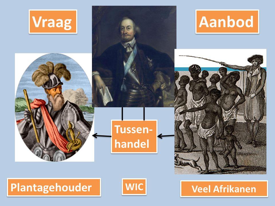 Vraag Aanbod Tussen- handel Plantagehouder WIC Veel Afrikanen