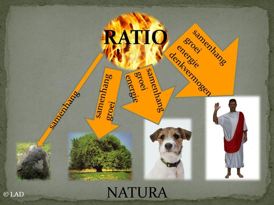 RATIO NATURA samenhang groei energie denkvermogen samenhang groei
