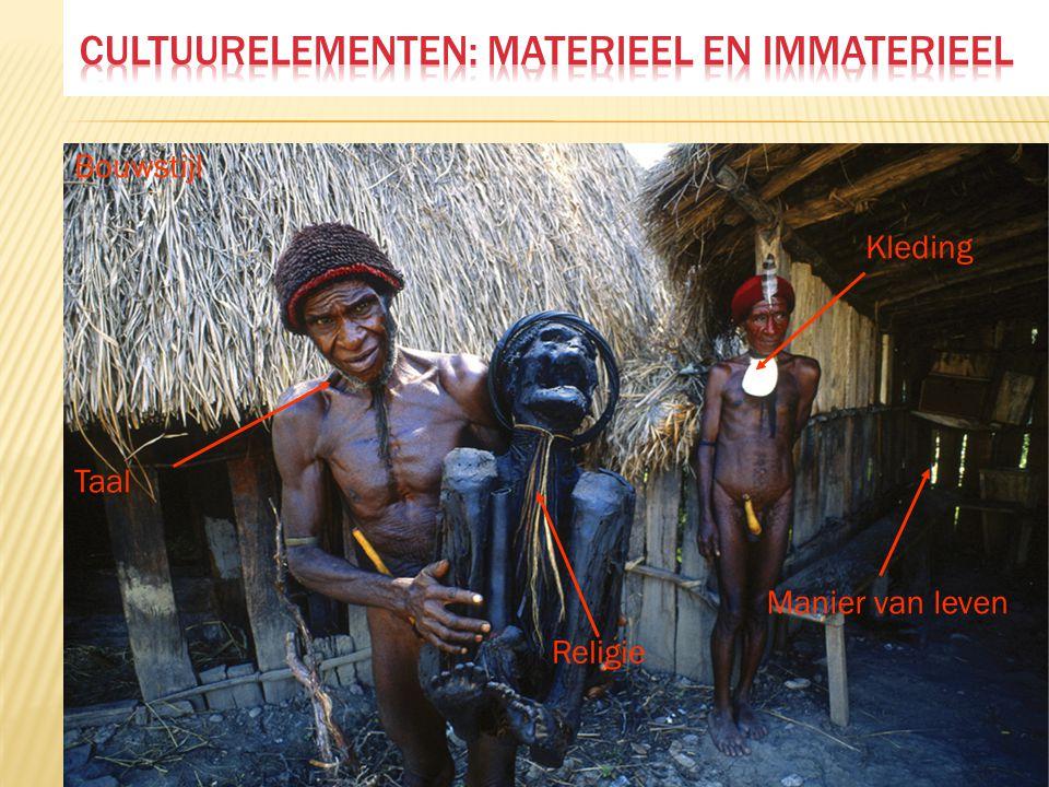 Cultuurelementen: materieel en immaterieel