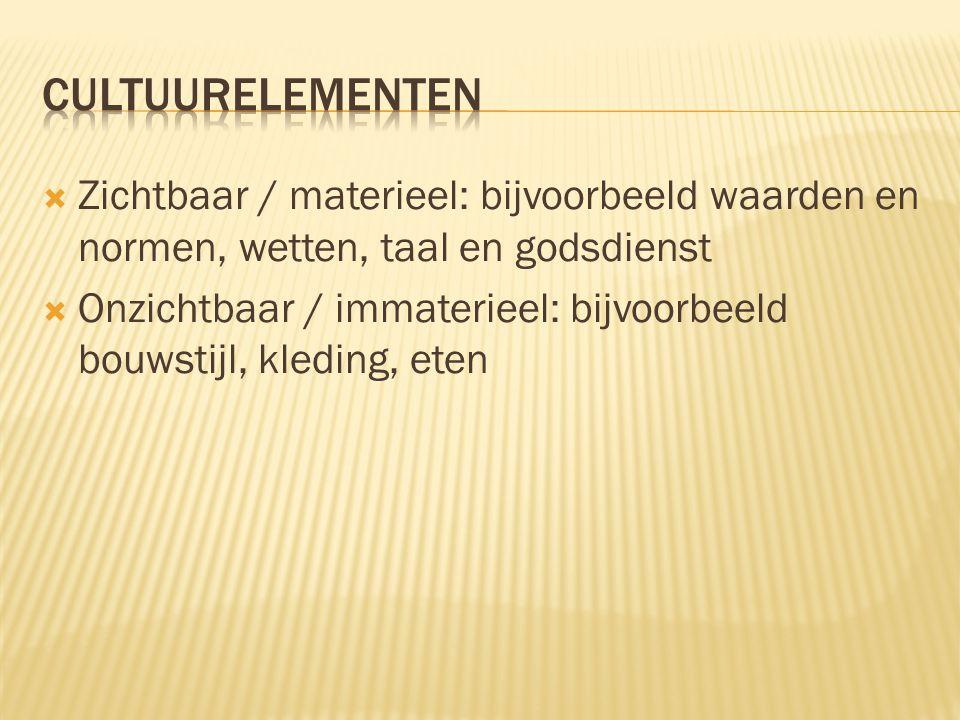cultuurelementen Zichtbaar / materieel: bijvoorbeeld waarden en normen, wetten, taal en godsdienst.