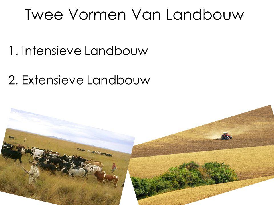 Twee Vormen Van Landbouw 1. Intensieve Landbouw 2. Extensieve Landbouw