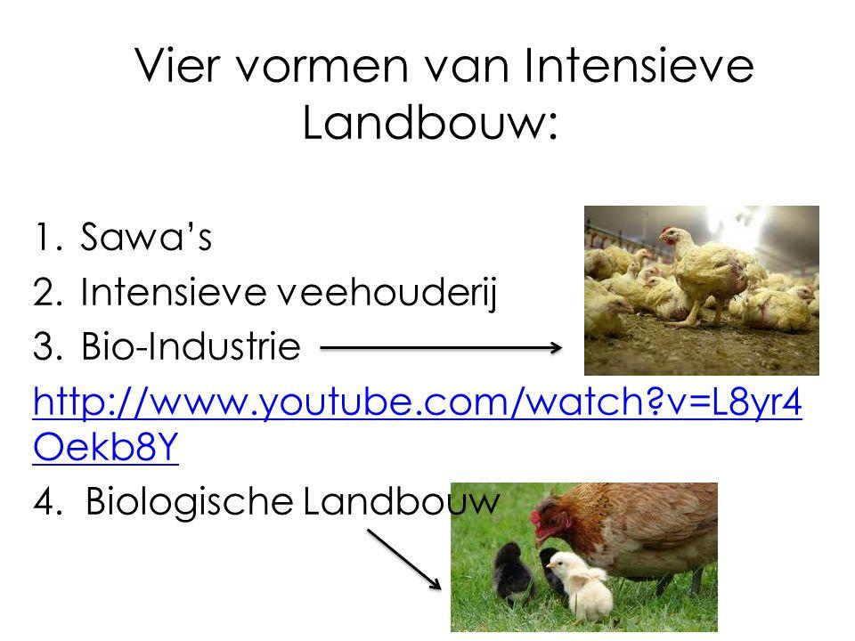 Vier vormen van Intensieve Landbouw:
