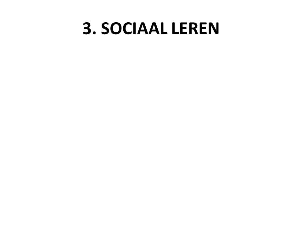3. SOCIAAL LEREN