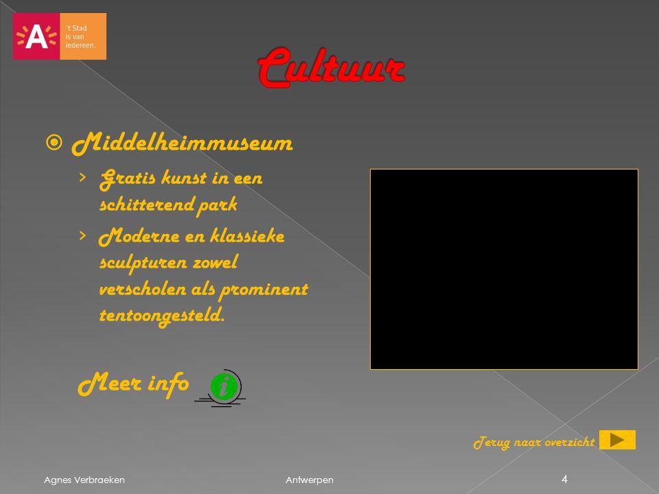 Cultuur Middelheimmuseum Meer info