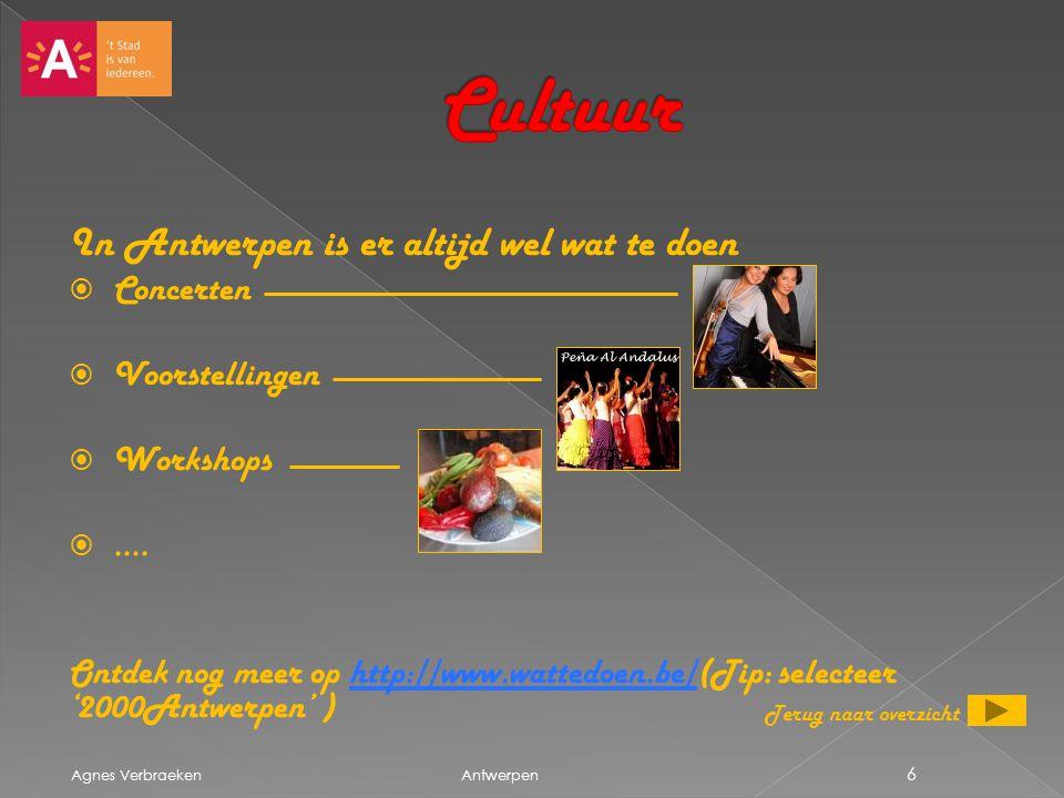 Cultuur In Antwerpen is er altijd wel wat te doen Concerten