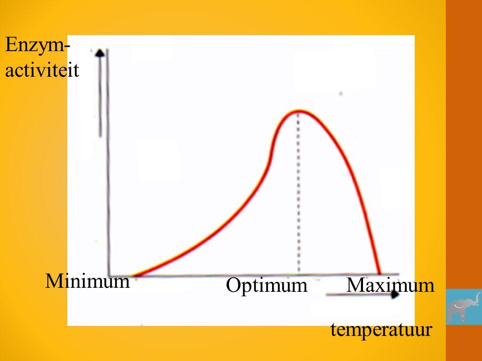 Enzym-activiteit Minimum Optimum Maximum temperatuur