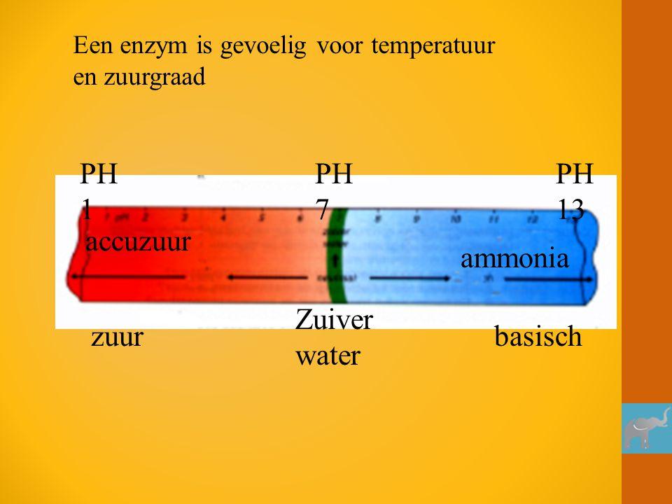 PH 1 PH 7 PH 13 accuzuur ammonia Zuiver water zuur basisch