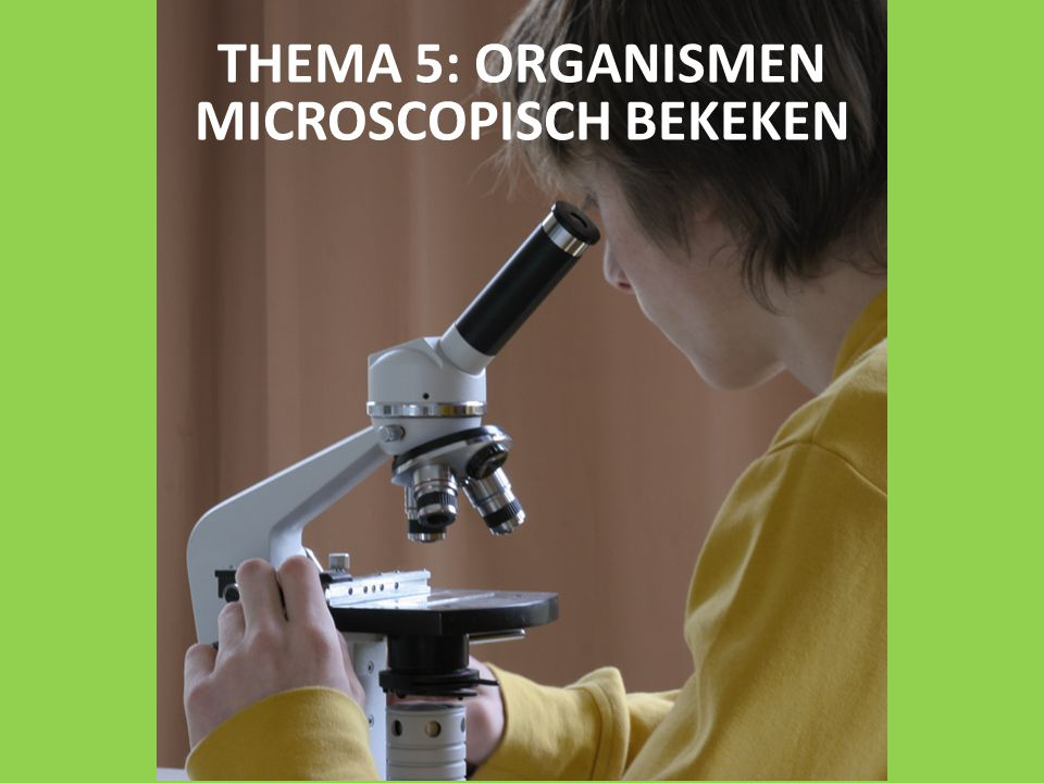 THEMA 5: ORGANISMEN MICROSCOPISCH BEKEKEN