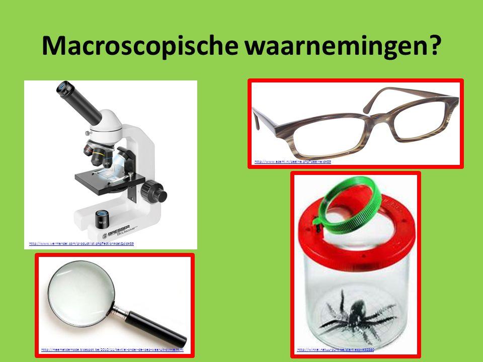 Macroscopische waarnemingen