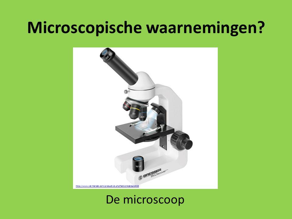 Microscopische waarnemingen