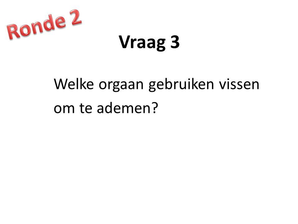 Ronde 2 Vraag 3 Welke orgaan gebruiken vissen om te ademen