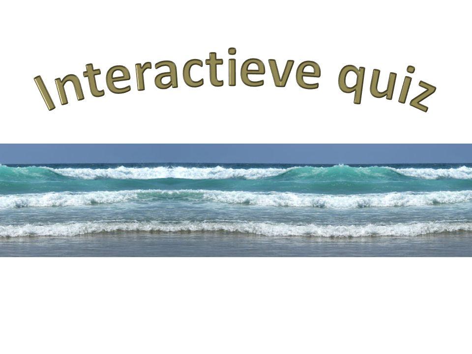 Interactieve quiz