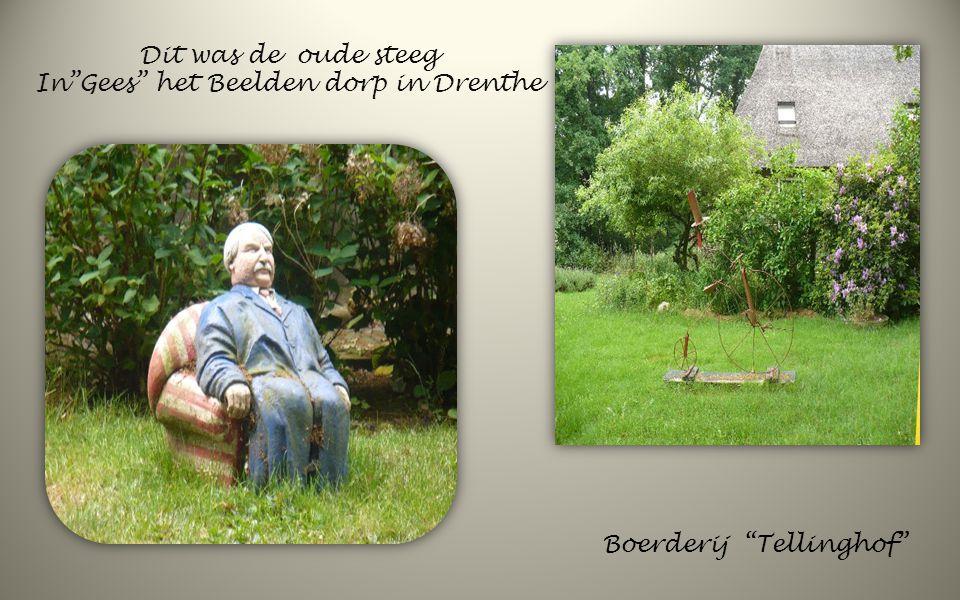 In Gees het Beelden dorp in Drenthe