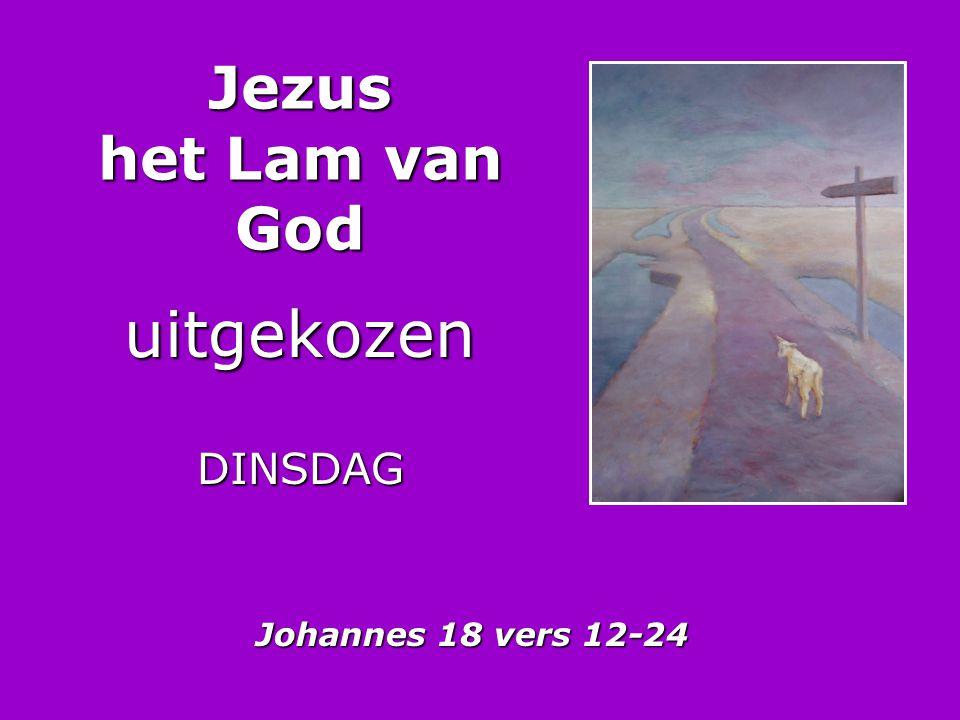 Jezus het Lam van God uitgekozen DINSDAG Johannes 18 vers 12-24