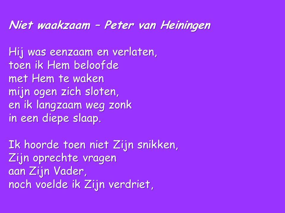 Niet waakzaam – Peter van Heiningen