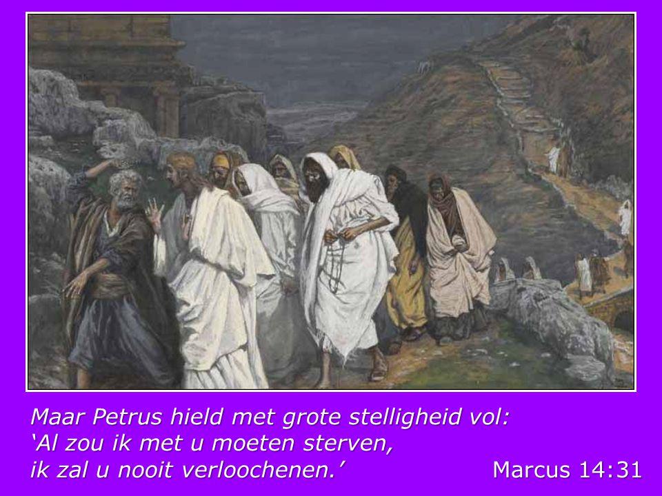Maar Petrus hield met grote stelligheid vol: