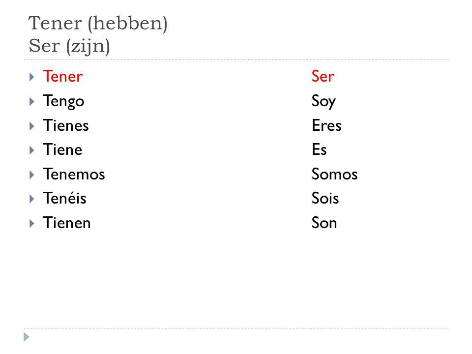 Tener (hebben) Ser (zijn)