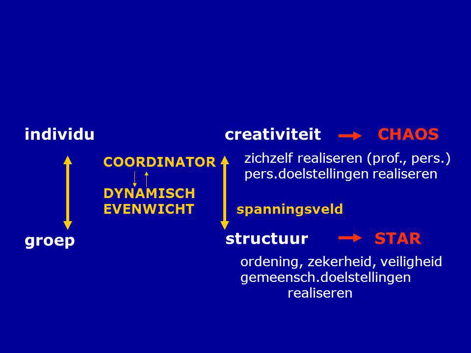 individu creativiteit CHAOS groep structuur STAR