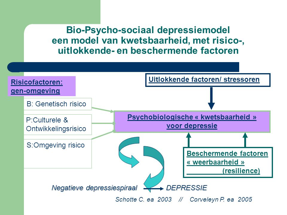 Psychobiologische « kwetsbaarheid » voor depressie