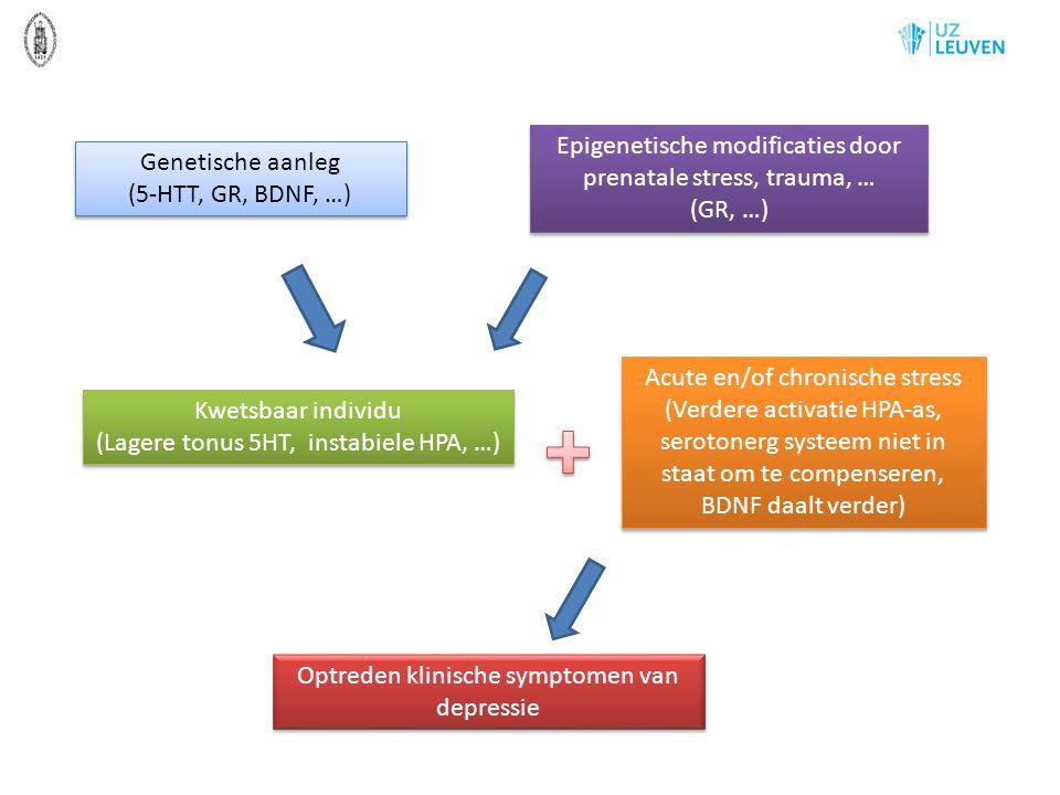 Epigenetische modificaties door prenatale stress, trauma, … (GR, …)