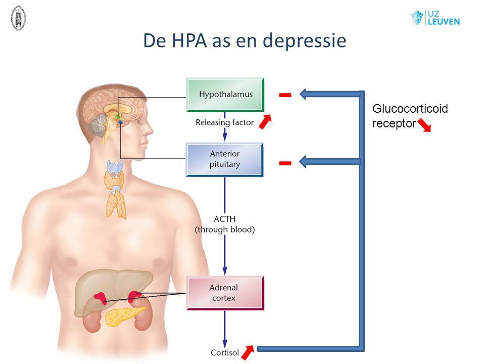 De HPA as en depressie - Glucocorticoid receptor