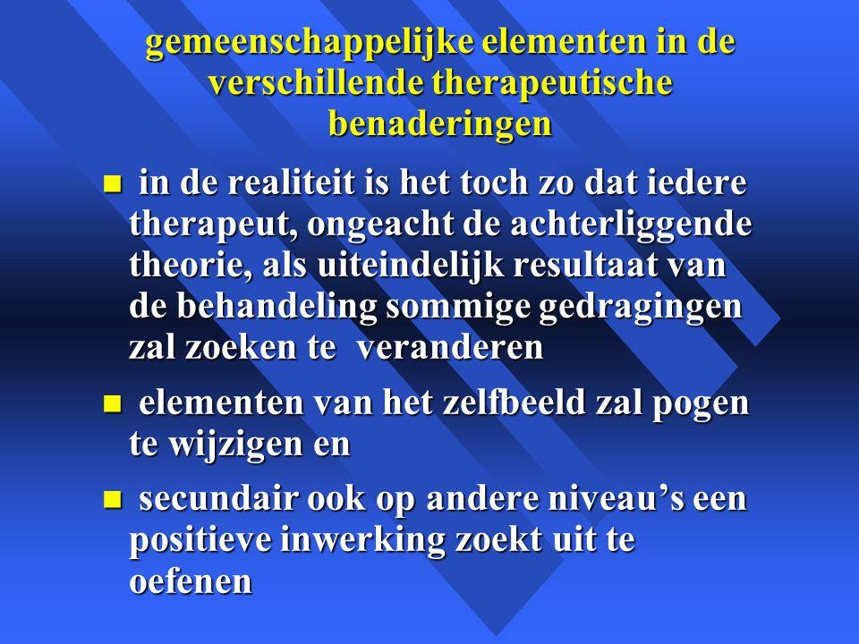 gemeenschappelijke elementen in de verschillende therapeutische benaderingen