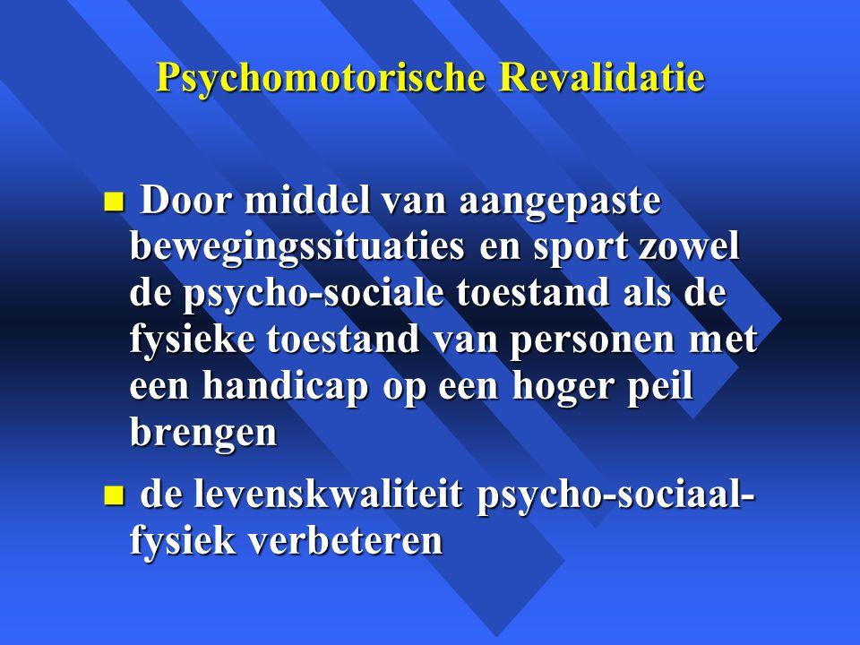 Psychomotorische Revalidatie
