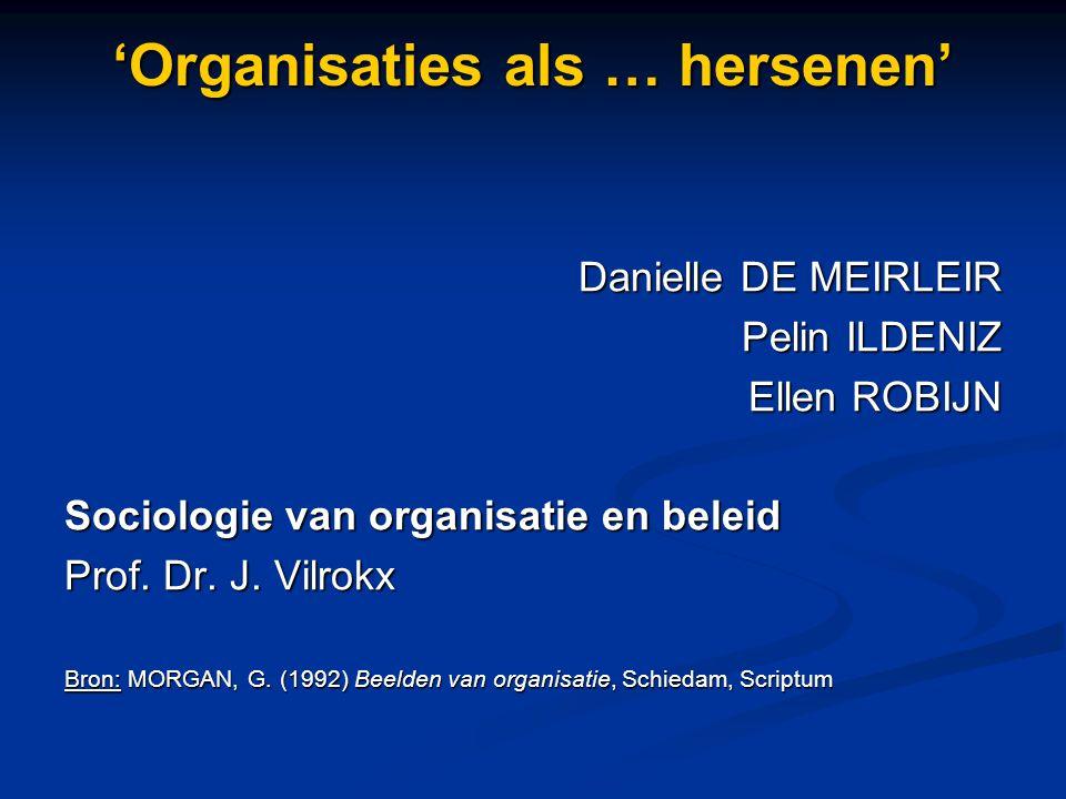 'Organisaties als … hersenen'