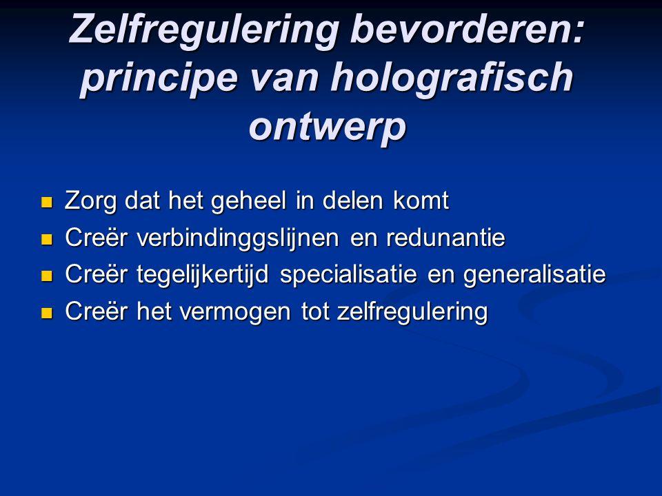 Zelfregulering bevorderen: principe van holografisch ontwerp