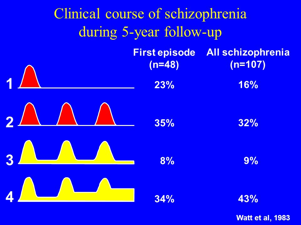 Clinical course of schizophrenia during 5-year follow-up