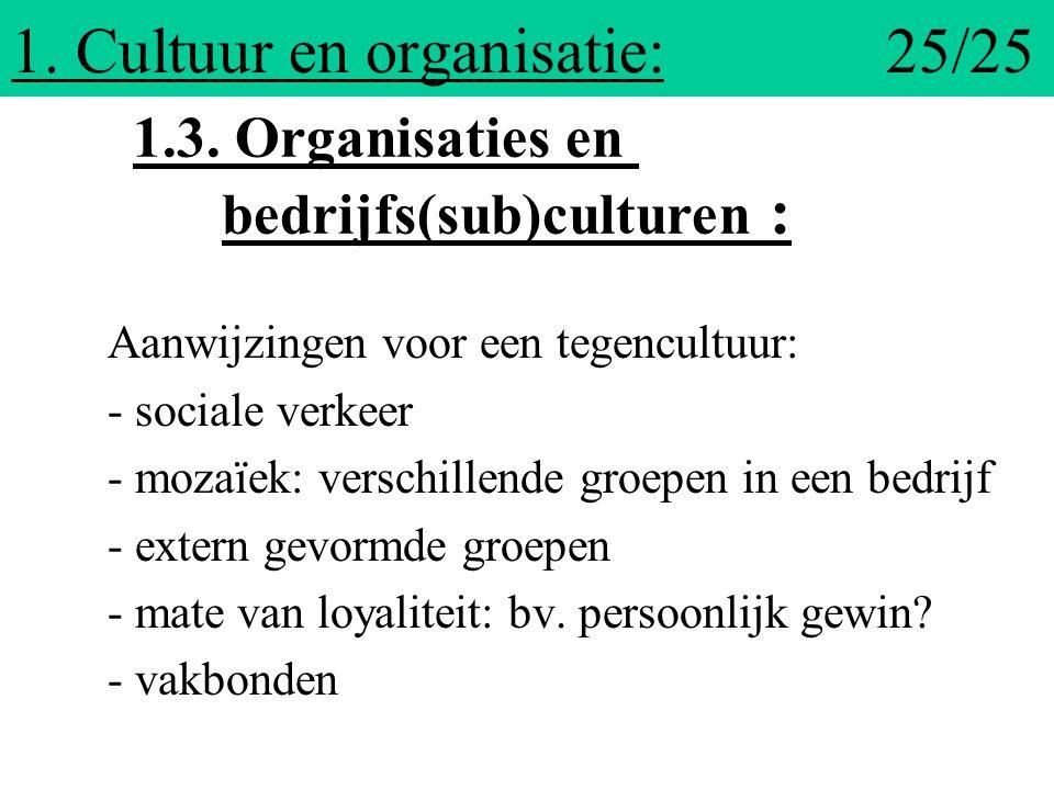 1. Cultuur en organisatie: 25/25
