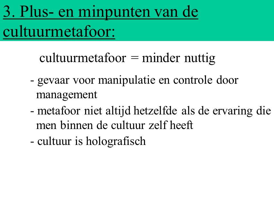 3. Plus- en minpunten van de cultuurmetafoor: