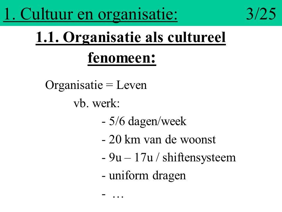 1. Cultuur en organisatie: 3/25