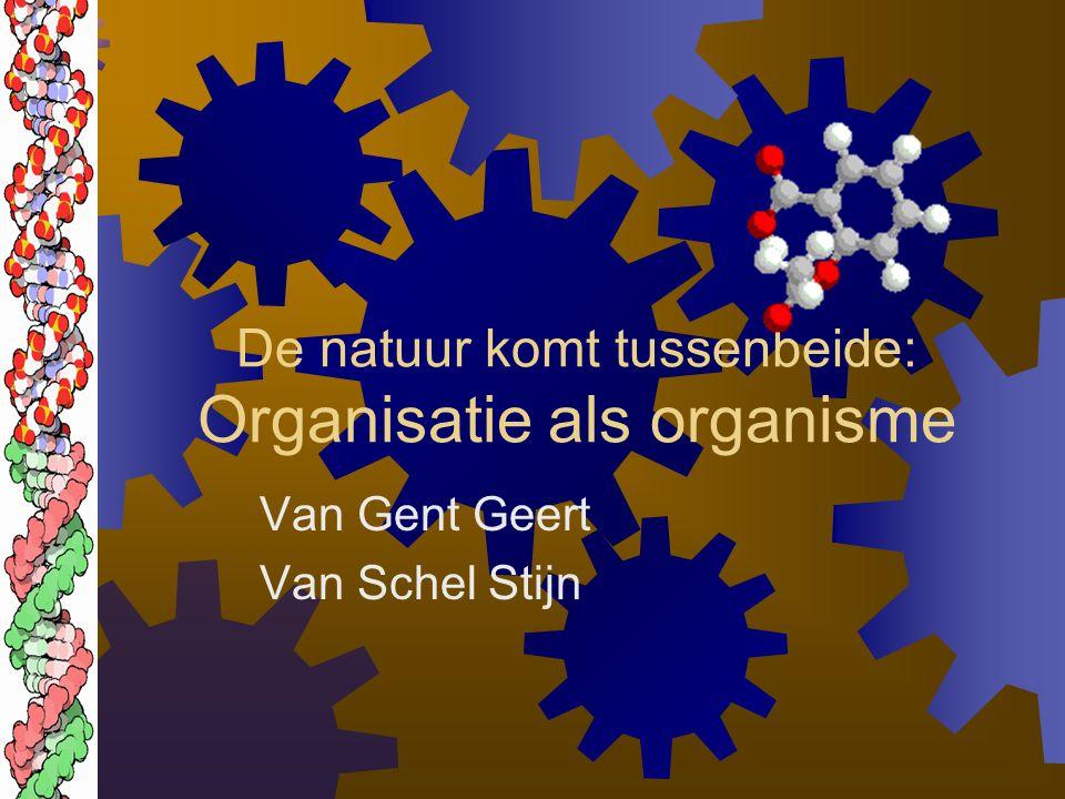 De natuur komt tussenbeide: Organisatie als organisme
