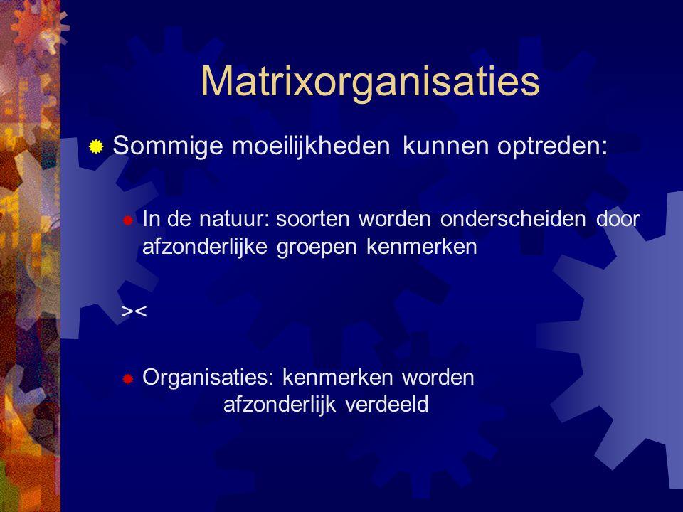 Matrixorganisaties Sommige moeilijkheden kunnen optreden: