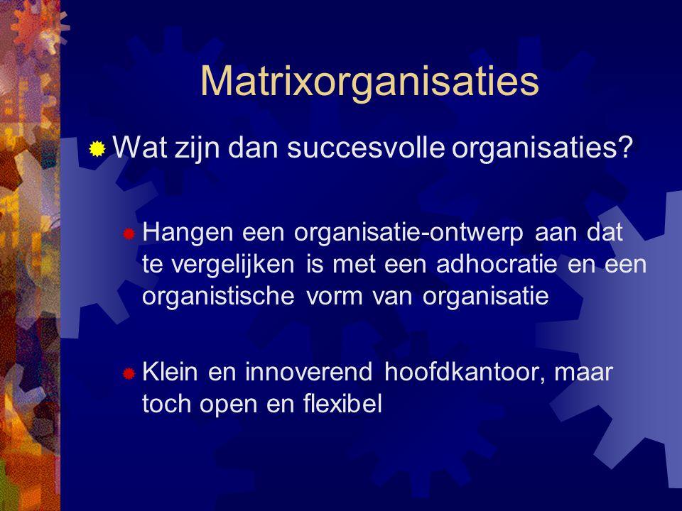Matrixorganisaties Wat zijn dan succesvolle organisaties